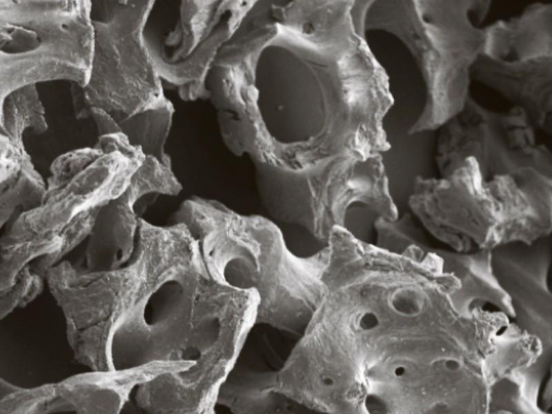 bioOST XENOGRAFT Mineral